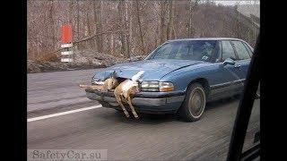 Авто приколы на дорогах   с девушками,УЖАС.